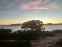 Coucher du soleil dans Ibiza image libre de droits