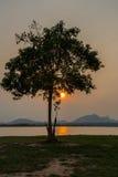 Coucher du soleil dans l'environnement d'hiver Photo libre de droits