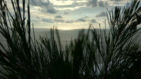 Coucher du soleil dans l'herbe Image libre de droits