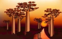 Coucher du soleil dans la forêt africaine 1 de baobab Image stock