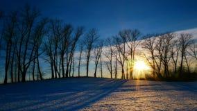 Coucher du soleil dans la forêt d'hiver clips vidéos