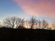 Coucher du soleil dans la forêt et les nuages rouges images stock