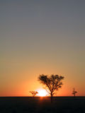 Coucher du soleil dans la savane Photographie stock