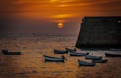 Coucher du soleil dans la tasse argentée photos libres de droits