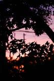 Coucher du soleil dans la ville rougeâtre photographie stock