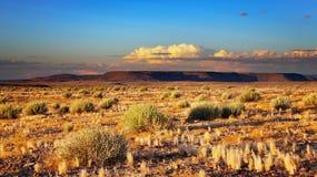 Coucher du soleil dans le désert de Kalahari image libre de droits