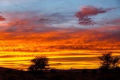 Coucher du soleil dans le désert de Sahara Photo stock