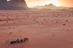 Coucher du soleil dans le désert de Wadi Rum, Jordanie, avec les bédouins et les chameaux locaux sur le premier plan photo libre de droits