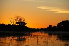 Coucher du soleil dans le delta d'Okavango Photos stock