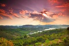 Coucher du soleil dans le domaine 3 de thé Photographie stock libre de droits