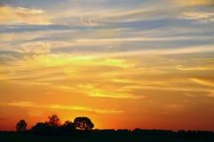 Coucher du soleil dans le domaine Silhouettes des arbres Images stock