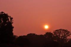 Coucher du soleil dans le jardin Delhi de Lodhi Images stock