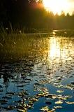 Coucher du soleil dans le lac Image libre de droits