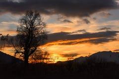 Coucher du soleil dans le marais Image stock