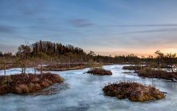 Coucher du soleil dans le marais congelé image libre de droits