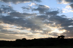 Coucher du soleil dans le masai Mara Photos stock