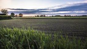 Coucher du soleil dans le paysage #2 de campagne banque de vidéos