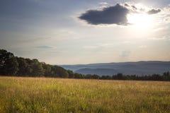 Coucher du soleil dans le pré herbeux Image stock