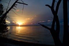 Coucher du soleil dans les bois Photographie stock