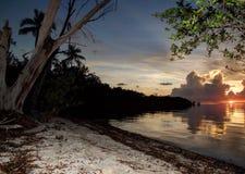 Coucher du soleil dans les bois avec le sable et les arbres Photographie stock
