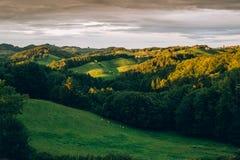 Coucher du soleil dans les collines styrian images libres de droits