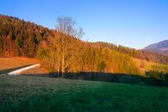Coucher du soleil dans les collines styrian images stock