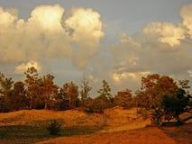 Coucher du soleil dans les sables du milieu de la forêt Photographie stock libre de droits