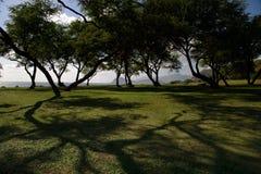 Coucher du soleil dans Oahu Images stock