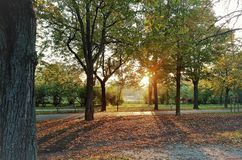 Coucher du soleil dans Prater photos libres de droits