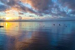 Coucher du soleil de baie de jeunes Photo libre de droits
