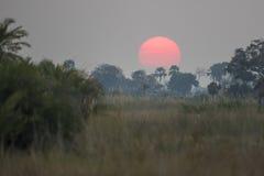 Coucher du soleil de Bostwanan photographie stock libre de droits