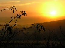 coucher du soleil de campagne Photographie stock libre de droits