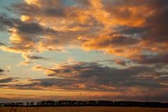 Coucher du soleil de champ de blé Photo libre de droits