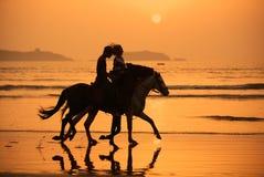 Coucher du soleil de chevaux Image stock