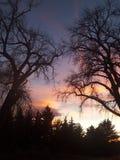 Coucher du soleil de chute Image libre de droits