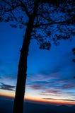 Coucher du soleil de ciel bleu Photo libre de droits