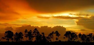 Coucher du soleil de clairières photographie stock libre de droits