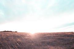 Coucher du soleil de colline de Cleeve Image libre de droits