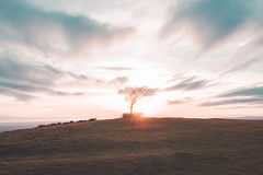 Coucher du soleil de colline de Cleeve Photos stock