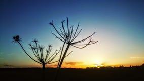 Coucher du soleil de Colorfull photos stock