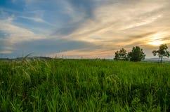 Coucher du soleil de cramoisi d'été Photographie stock libre de droits