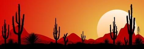 Coucher du soleil 1 de désert du Mexique illustration stock