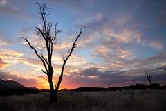 Coucher du soleil de désert, Namibie Images libres de droits