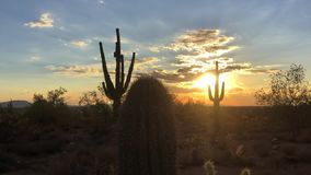 Coucher du soleil de désert de Scottsdale Arizona