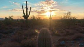 Coucher du soleil de désert de Scottsdale Arizona clips vidéos
