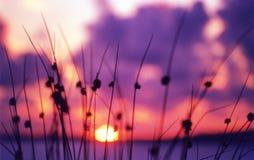 Coucher du soleil de Doon Photos stock