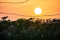 Coucher du soleil de fer Image libre de droits
