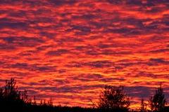 Coucher du soleil de flambage Image libre de droits