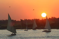 coucher du soleil de fleuve photographie stock libre de droits