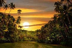 coucher du soleil de fleuve de forêt humide Image stock
